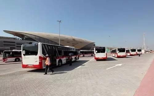 free_big_bus_01