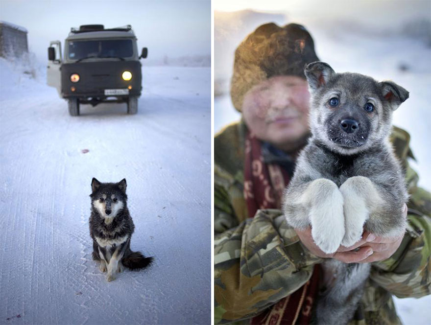 the-coldest-country-in-the-world-22