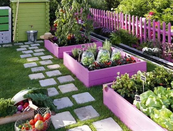 how-to-grow-vegetables-more-beautiful-than-the-garden-07