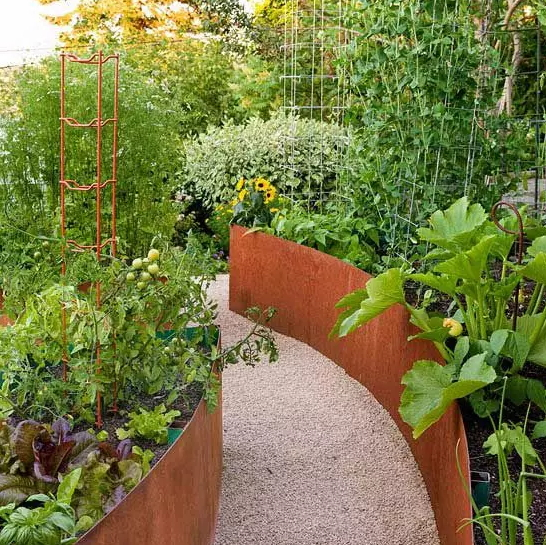 how-to-grow-vegetables-more-beautiful-than-the-garden-18