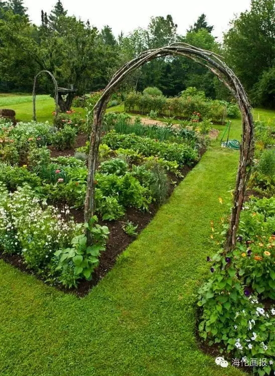 how-to-grow-vegetables-more-beautiful-than-the-garden-24