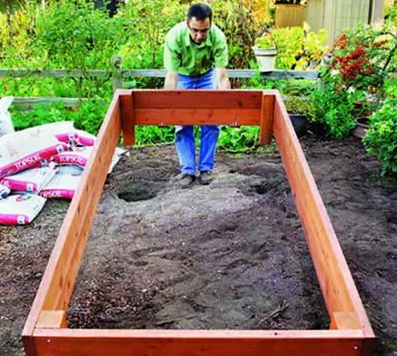 how-to-grow-vegetables-more-beautiful-than-the-garden-31
