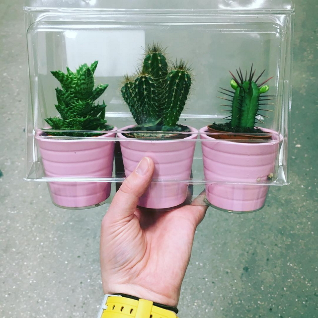 ikea-has-fresh-cute-little-cactus-gadgets-04