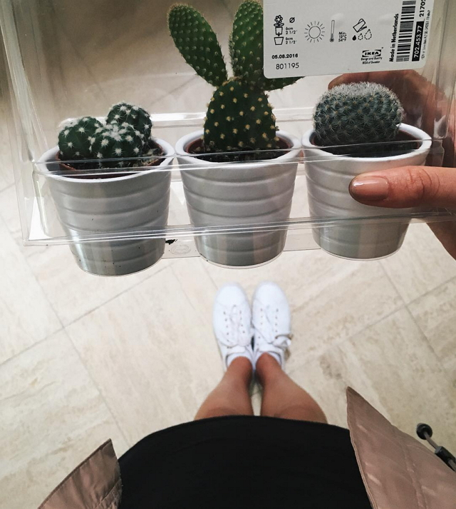 ikea-has-fresh-cute-little-cactus-gadgets-05