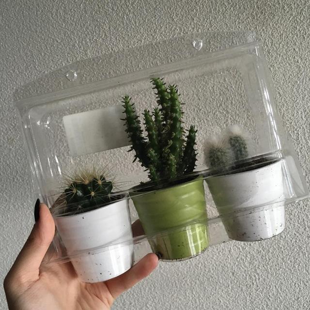 ikea-has-fresh-cute-little-cactus-gadgets-06