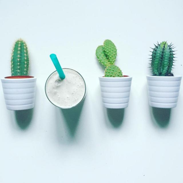 ikea-has-fresh-cute-little-cactus-gadgets-07