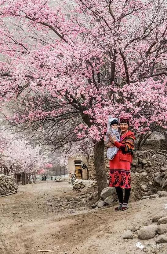 the-world-s-most-beautiful-heng-fa-chuen-10