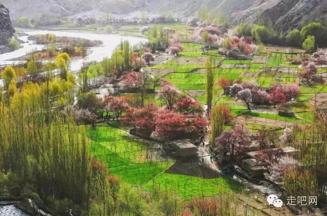 the-world-s-most-beautiful-heng-fa-chuen-13
