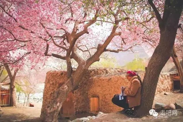 the-world-s-most-beautiful-heng-fa-chuen-17