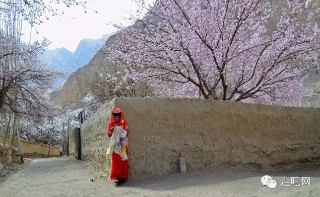 the-world-s-most-beautiful-heng-fa-chuen-19