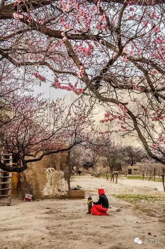 the-world-s-most-beautiful-heng-fa-chuen-20