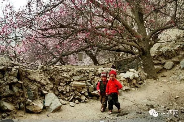 the-world-s-most-beautiful-heng-fa-chuen-36