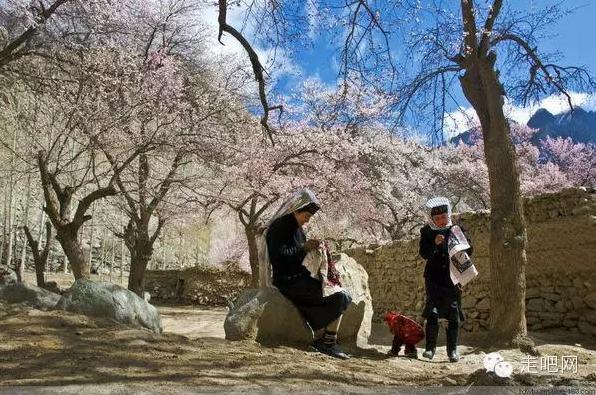 the-world-s-most-beautiful-heng-fa-chuen-46