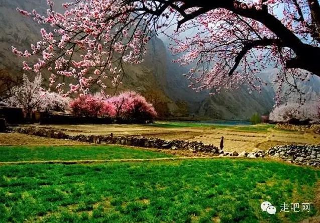 the-world-s-most-beautiful-heng-fa-chuen-60