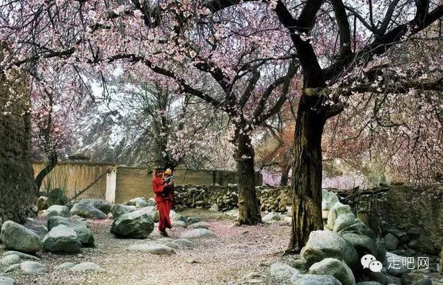 the-world-s-most-beautiful-heng-fa-chuen-73