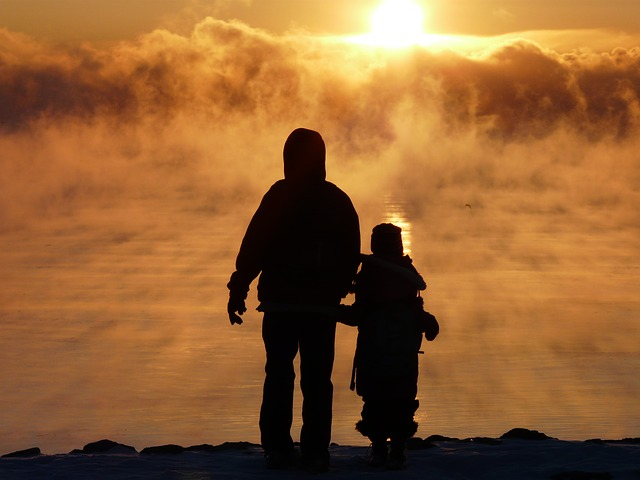 fog-79456_640