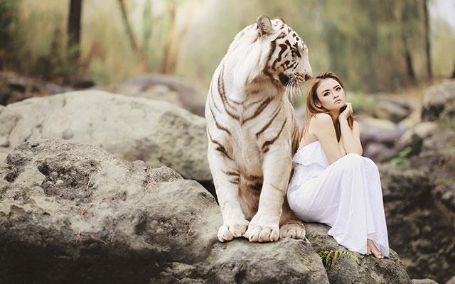 vegetarian-lioness-01